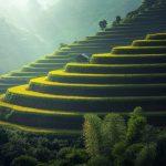 preparer son voyage en Birmanie