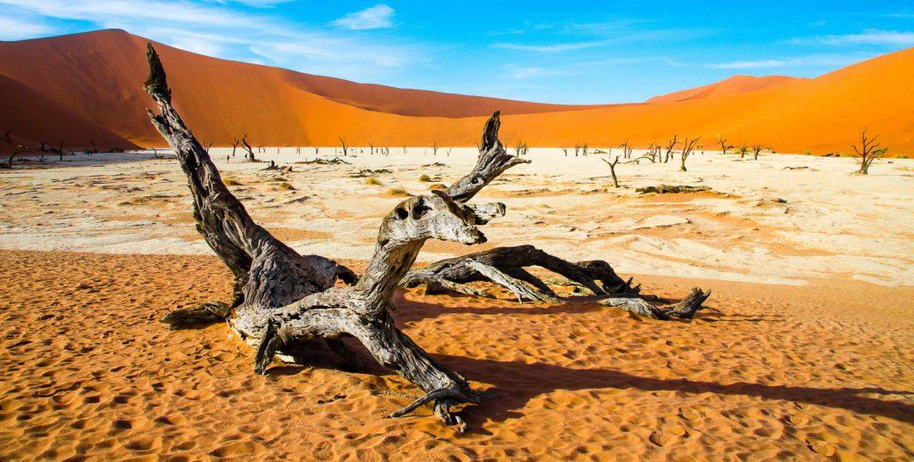 Préparer son voyage en Namibie