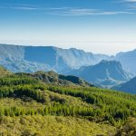 incontournables Réunion