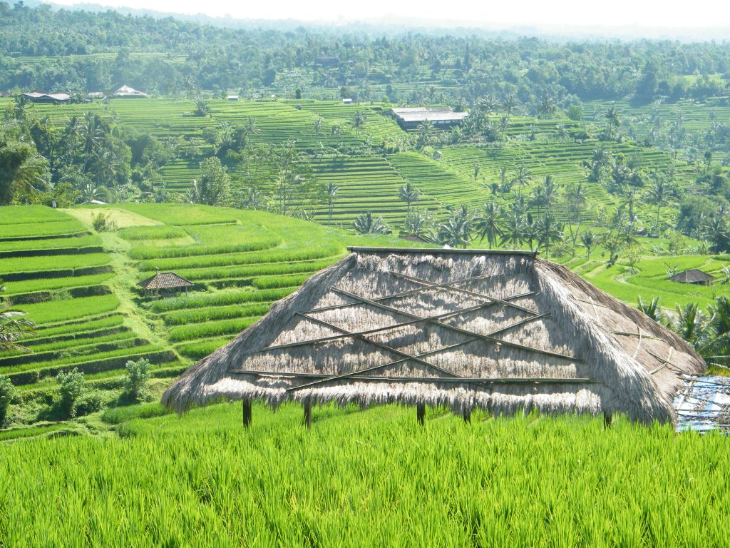 incontournables Indonesie