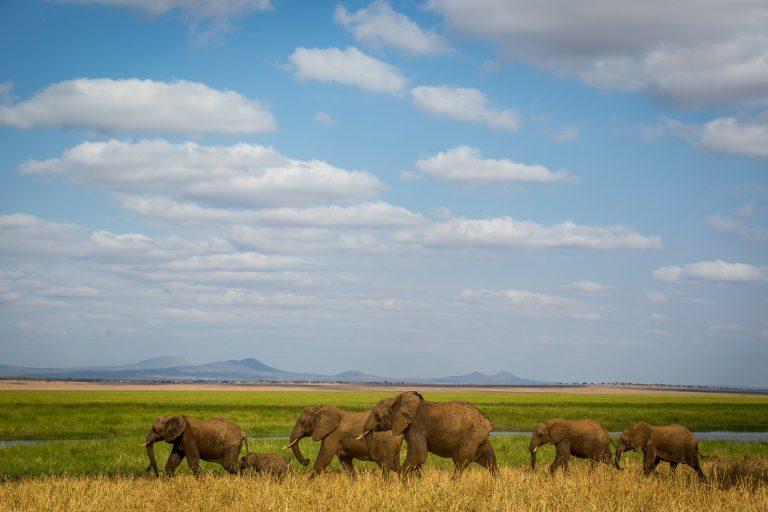 Préparer son voyage en Tanzanie