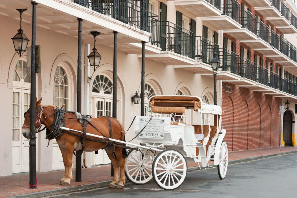 Combiné Louisiane Floride - Carnaval de la Nouvelle-Orléans
